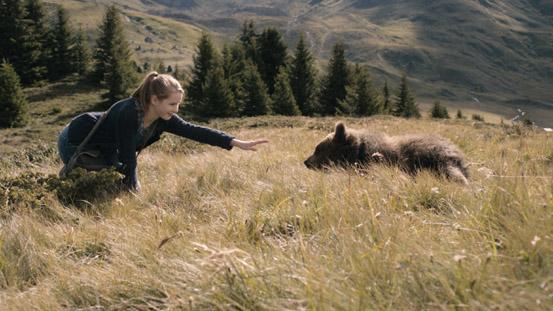 Clara és a medvék titka