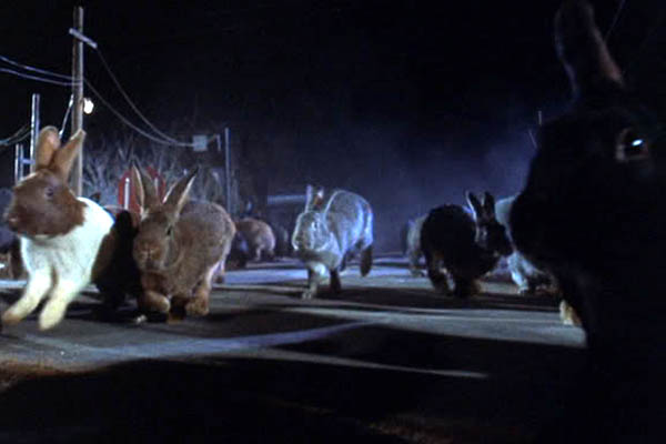 Rabbits_Night_of_the_Lepus